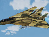 F-14B -Persian Cat-