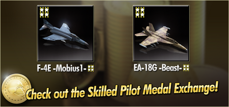 F-4E -Mobius1- and EA-18G -Beast- Skilled Pilot Medal Exchange Banner