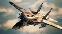 AC7 KITTEN Assault Record Skin