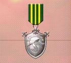 Ace x2 mp medal silver flight