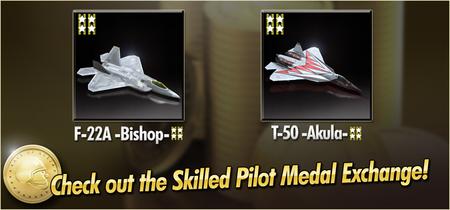 F-22A -Bishop- and T-50 -Akula- Skilled Pilot Medal Exchange Banner