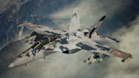 AC7 SPIDER Assault Record Skin