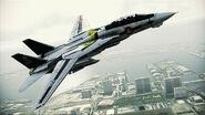F-14D VF-1S Flyby