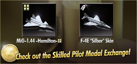 MiG-1.44 -Hamilton- and F-4E Silber Skin Skilled Pilot Medal Exchange Banner