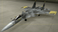 Su-37 Mercenary color hangar