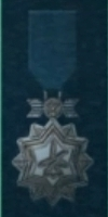 AC5 Bronze Ace Medal