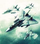 Ace Combat 5 Wardog Squadron Large