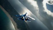 Su-37 Special Skin Distant 2