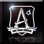 Bone Arrow Emblem Icon