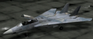 F-14A Erusian color Hangar