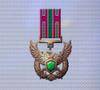 Ace x mp medal bronze roc