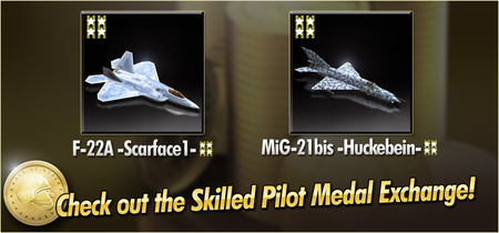 F-22A -Scarface1- and MiG-21bis -Huckebein- Skilled Pilot Medal Exchange Banner