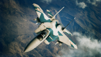 AC7 FANG Assault Record Skin