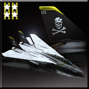 F-14D -Jolly Rogers- Icon