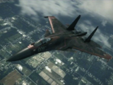Ace Combat 6: Fires of Liberation/Aces