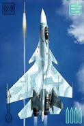 ACAHTF Su-33D