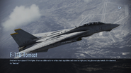 F-14B Tomcat loading screen