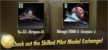 Su-33 -Strigon- and Mirage 2000-5 -Scorpio- Skilled Pilot Medal Exchange Banner