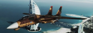 F-14A Tomcat Normal Skin 01 Brown flyby