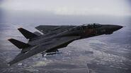 F-14A -Razgriz- flyby 2