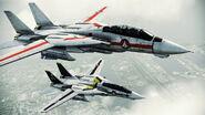 """F-14D """"VF-1J & VF-1S Valkyrie"""""""