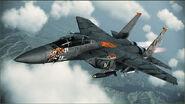 "F-15E ""Tiger Pattern"""