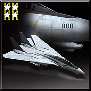F-14A -Chopper- Icon