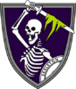 Skeleton Squadron Emblem