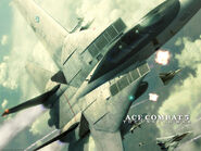 AC5 Wardog Game Logo Wallpaper 1024x768