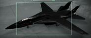 F-14B Razgriz color Hangar