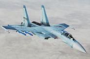 Su-37 -Rena Hirose- Flyby