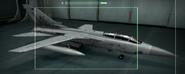 Tornado F3 OSEA color Hangar
