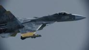 Su-37 Jean Louis flyby 1