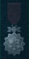 AC5 Silver Ace Medal