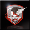 The Heroes of Razgriz Emblem - Icon