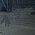 AC7 Gryphus (Low-Vis) Emblem Hangar
