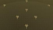 Aquilaformation