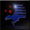 Garuda (High-Vis) Infinity emblem