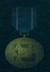 AC5 Guardian Medal