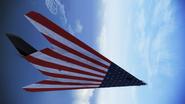 F117 Star Stripes Flyby 1