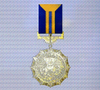 Ace x sp medal gold wing