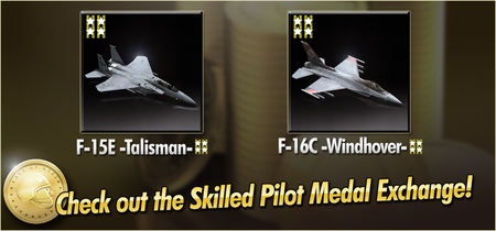 F-15E -Talisman- and F-16C -Windhover- Skilled Pilot Medal Exchange Banner