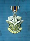 AC3D Medal 12 Swan Hunter