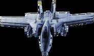 F-14A Arrows