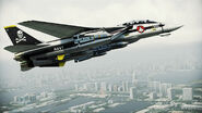 F-14D VF-1S Flyby 3