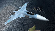 Su-27 ACX Flyby 7