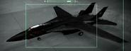 F-14A Razgriz color Hangar