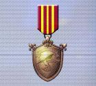Ace x mp medal bronze defender