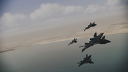 XFA-33 -Alect- Formation
