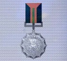 Ace x sp medal silver wing
